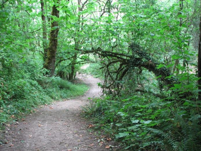 2 Winding Path