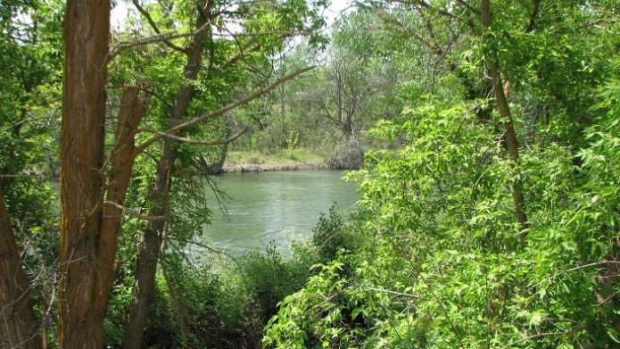 8 River