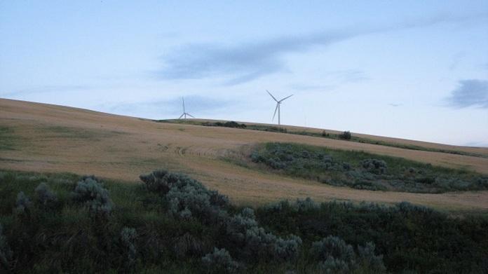 Windmills (16)