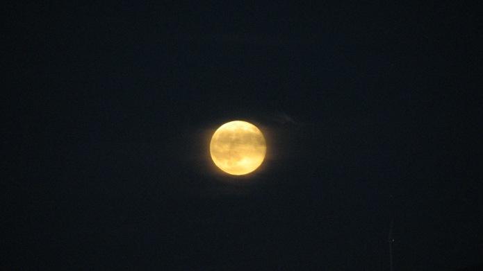6 Yellow Moon (4)