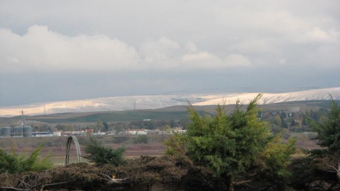 IMG_4482_Sunlit Hills