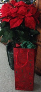 Poinsettia and Gift