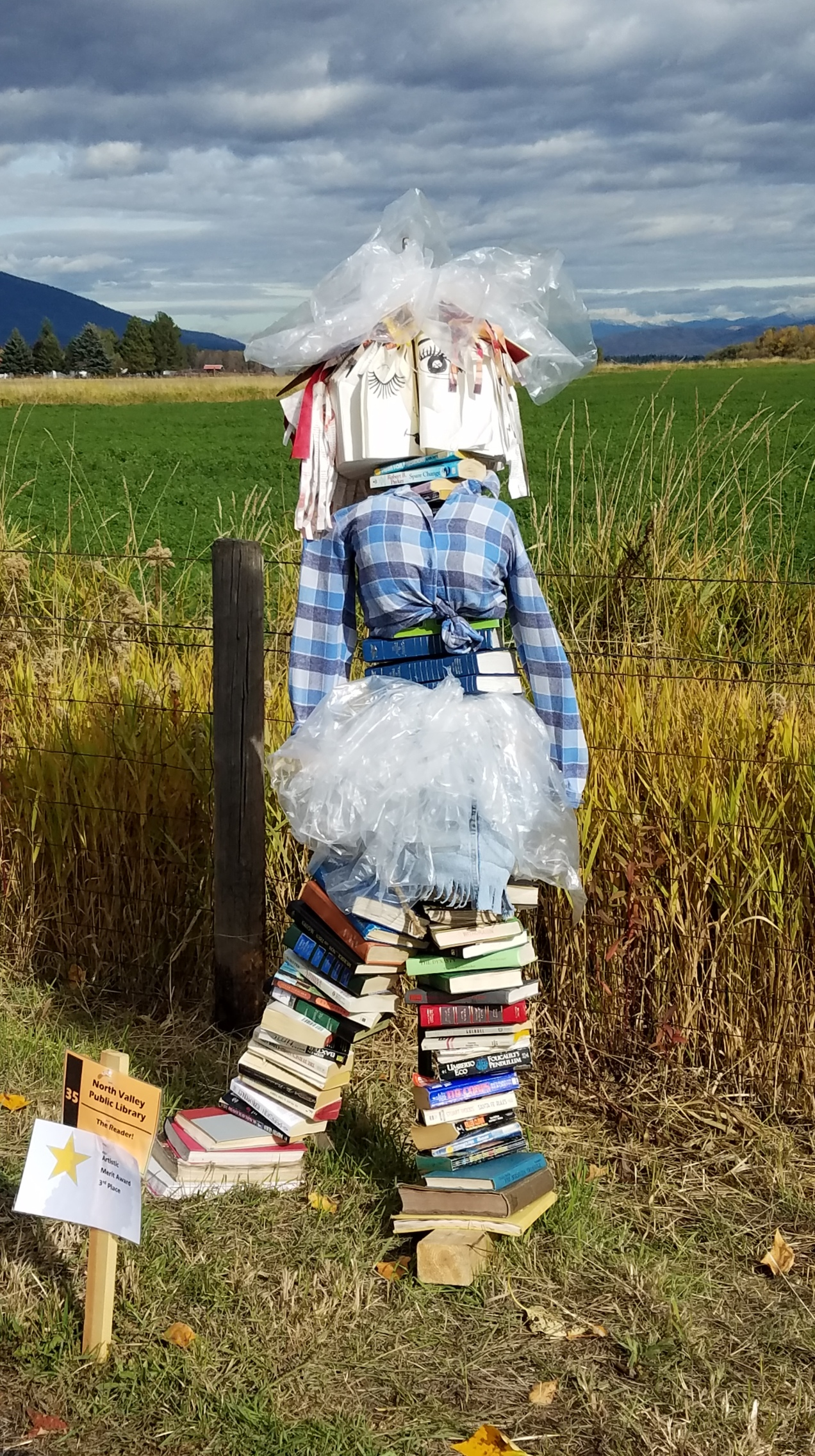 bookscarecrow